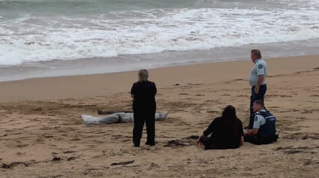 nzl : CABLE BAY, NZL - MAR 02 2015:Police officers investigate eyewitness that found body washes ashore.According to International Rewards Center about 607 people go missing every day around the world.