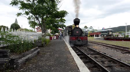 train workers : KAWAKAWA,NZ - JAN 11:Gabriel steam engine on Jan 11 2014.Gabriel, built in 1927 is a fine example of a working steam engine and is the only one in her class left in the world. Stock Footage