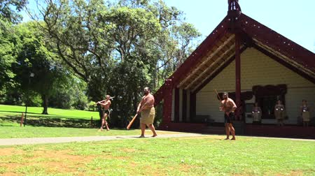 посетитель : WAITANGI, NZ - JAN 07:Maori welcoming ceremony powhiri on Jan 07 2014.Its used to welcome guests onto a marae, involving an aggressive challenge,speeches, dancing and singing. Part 46 Стоковые видеозаписи
