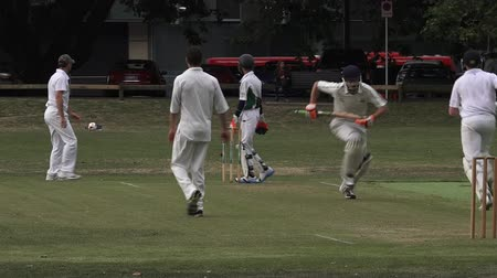 match : Cricket bowler bowling to a batsman..Its one of New Zealand most popular national sport and the first recorded game took place in Wellington in December 1842.