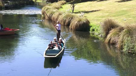 nzl : People Punting on the Avon river Christchurch.It is an iconic tourist attraction of Christchurch, New Zealand. Stock Footage