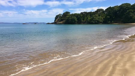 туристическим направлением : Panoramic landscape view of Coopers Beach.Its a famous holiday travel destination in Northland New Zealand.