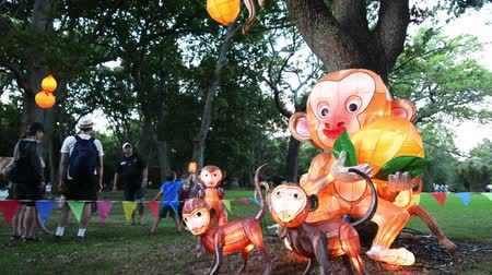 famílias : Chinese Monkeys lanterns in Auckland Lantern Festival the largest Chinese festival in New Zealand that celebrate Chinese New Year and welcome the Year of the Monkey