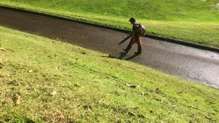 paisagístico : AUCKLAND, NZ - MAY 30 2016:Landscaper uses petrol leaf blower.  More than 2.5 million of gas-powered leaf blower will be sold this year alone-can emit as much pollution in a year as 80 cars.