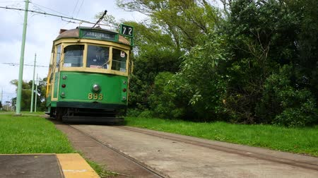nzl : W2 class tram in Auckland New Zealand Stock Footage