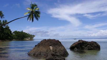 melanesia : Landscape of a tropical beach in Savusavu peninsula in Vanua Levu Island, Fiji.Savusavu is a popular travel destination in Fiji known for its diving and yachting facilities.
