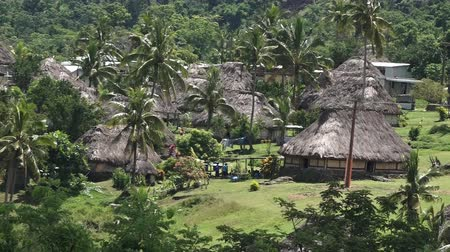 melanesia : Aerial view of Navala village in the Ba Highlands of northern-central Viti Levu, Fiji. It is one of the few settlements in Fiji which remains fully traditional architecturally. Stock Footage
