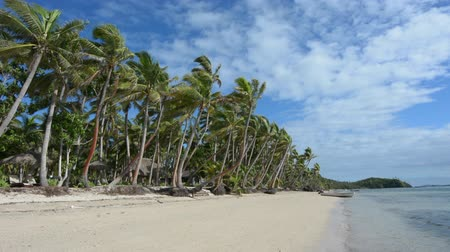 fijian : Landscape of a beach on Tropical Island  in the Yasawa Islands group, Fiji Stock Footage