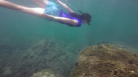 melanesia : Woman snorkeling dive over a tropical coral reef in Fiji.