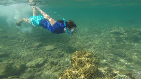 melanesia : Slow motion of a young woman snorkeling in a tropical resort on Vanua Levu Island, Fiji. Real people copy space Stock Footage