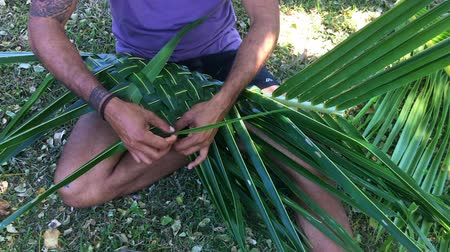 melanesia : Fijian man hands create a basket from weaving a Coconut Palm leaves.Travel Fiji culture. Real people copy space