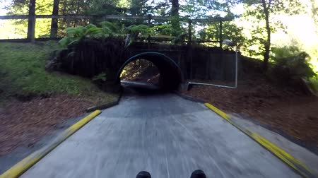 nzl : Slow motion of a person ride on Skyline Rotorua Luge. Its a gravity fun ride. Invented in New Zealand in 1985, and having hosted over 30 million rides worldwide.
