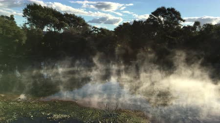 nzl : Landscape of thermal hot pools in Kuirau Park in Rotorua North Island, New Zealand.