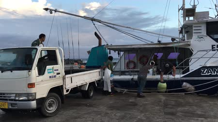 cook islanders : Cook Islanders fishermen unloading their catch in Ports of Avatiu. Cook Islands exclusive economic zone territorial waters stretches for nearly 2 million square km (772,395 sq)