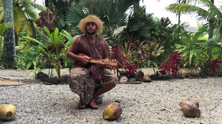 polynesisch : Cook Islander man speelt op Ukulele Guitar in Rarotonga, Cook Islands.