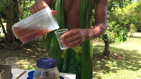cook islanders : Cook Islander prepares herbal drink on Eco tourism tour in Rarotonga Cook Islands Stock Footage