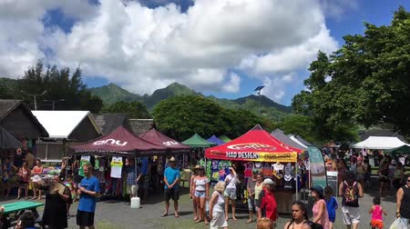 cook islanders : Visitors at Punanga Nui Market in Avarua town, Cook Islands.Its one of the highly regarded traditional markets in the South Pacific and were tourists mix with the locals. Stock Footage