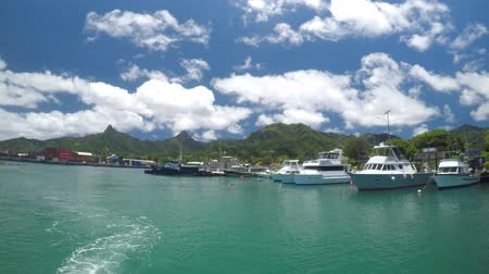 ancorado : Boats moored in Avarua Harbour Rarotonga Cook Islands Stock Footage