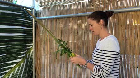 nimet : Jewish woman blessing on the four species (etrog,lulav ,hadass,aravah) in a sukkah or succah during the week-long Jewish festival of Sukkot.