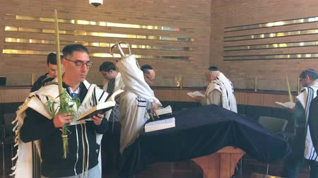 tallit : Jewish men circling a Torah scroll  and praying in synagogue on the seventh and last day of the Jewish holiday festival of Sukkoth (Hoshana Rabbah). Stock Footage