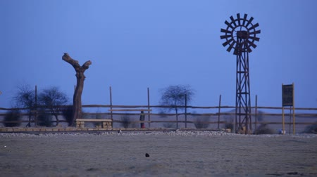 rajasthan : Desert Train station Stock Footage