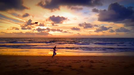 коршун : child playing with kite on the beach at sunset. slow motion running Стоковые видеозаписи