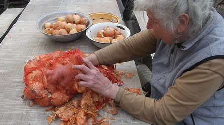 field kitchen : An old woman with gray hair picks up onions before cooking in the kitchen, organic vegetables, her own crop, selective focus Stock Footage