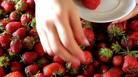 fincan tabağı : Closeup of female hand picking juicy fresh ripe strawberries and putting it on a white saucer, selective focus