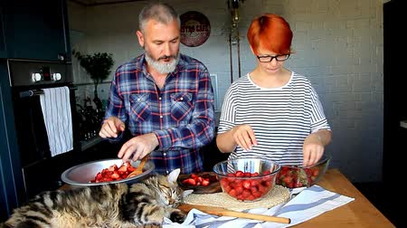 coon : Adult couple man and woman peel and cut strawberries for strawberry jam, feed each other, laugh and have fun, the Maine Coon kitten is on the kitchen table
