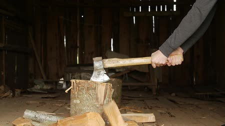 halve : Mans hand with an ax chopping wood.
