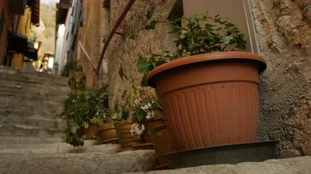 герань : Decorative pots with flowers on the street of Italian town Varenna.