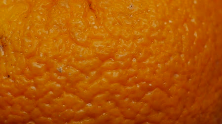 compelling : old, wrinkled, shriveled, tangerine cortical surface rotates in close-up