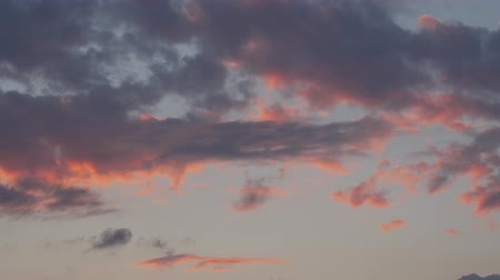 altocumulus : Abstract nature background. Dramatic and moody pink, purple and blue cloudy sunset sky. Stock Footage