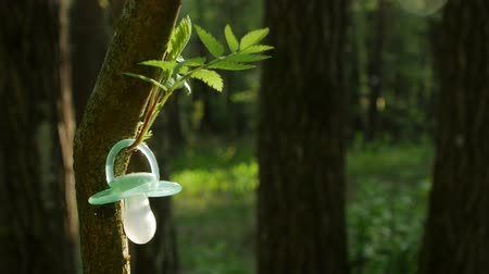 nipple : Dummies Hanging on Tree, closeup Stock Footage