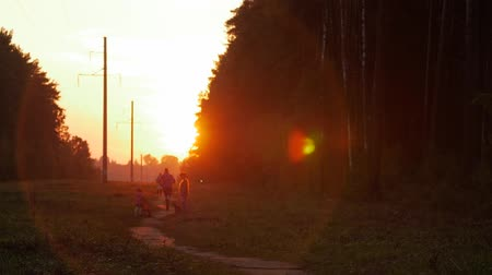 parque : Unidentified people. Runner in the park, sunset. Outdoor Active Nature Lifestyle.