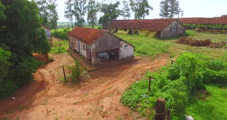 farm in brazil : House very simple and poorly cared for a poor farm in Brazil