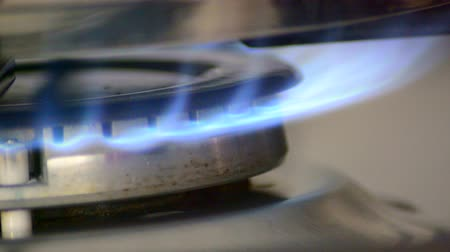 kuchenka : Stove top burner igniting for cooking. Blue flames