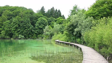 plitvice : Amazing Landscape at Plitvice Lakes National Park, Croatia.