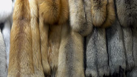 Many beautiful fur skins. HD video Stock Footage