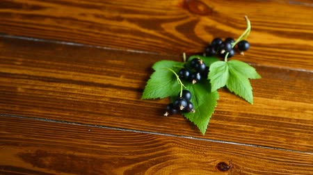 смородина : ripe berries black currants