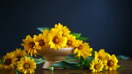chrysanthemum : bouquet of yellow big daisies Stock Footage