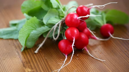 ルーツ : fresh organic red radish on a wooden table 動画素材