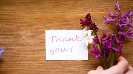to you : spring beautiful flowers of a hyacinth with a thank you card Stock Footage
