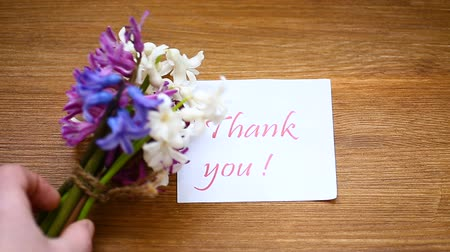 jacinto : spring beautiful flowers of a hyacinth with a thank you card Vídeos