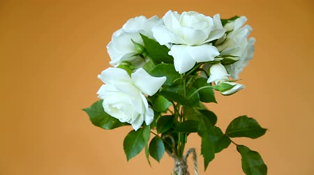pocztówka : bouquet of beautiful white roses on a orange