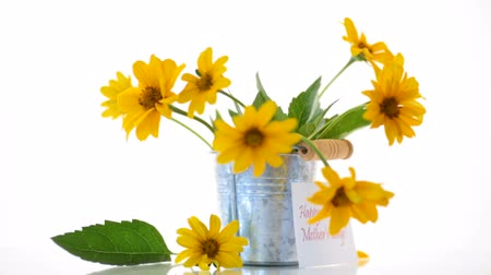 empilhamento : bouquet of beautiful blooming yellow daisies isolated on white