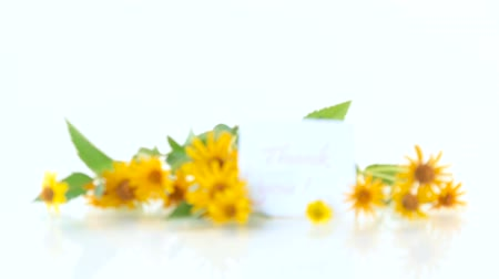 あなたの : bouquet of yellow big daisies on a white