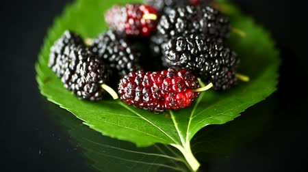 amoras : Mulberry berry with leaf isolated on black background Stock Footage