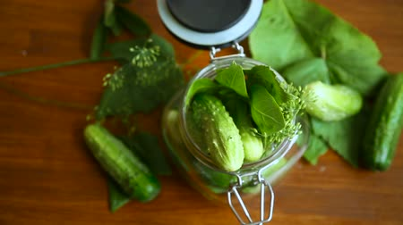 соленья : cucumbers and spices with herbs for canning in a jar