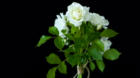 bouquet of beautiful white roses on a black